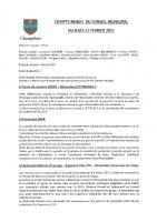 ccompte-rendu-conseil-municipal-11-fevrier-2021